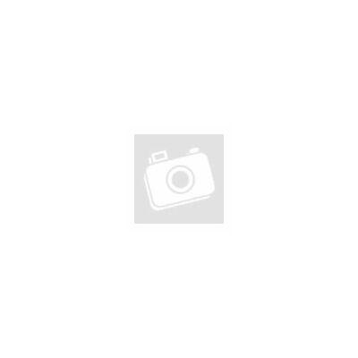 Mechanika (középfok)